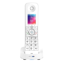 BT Premium Phone With Voice Control DECT Cordless Additional Handset & Charger
